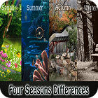 Four Seasons Differences game