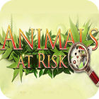 Animals At Risk game