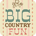 Big Country Fun game