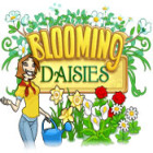 Blooming Daisies game