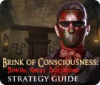 Brink of Consciousness: Dorian Gray Syndrome Strategy Guide game