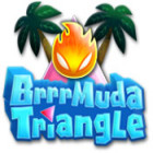 Brrrmuda Triangle game