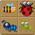 Bug Box game