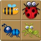 Bug Box game