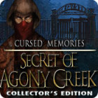 Cursed Memories: The Secret of Agony Creek Collector's Edition game