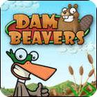 Dam Beavers game