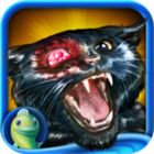 Dark Tales: Edgar Allan Poe's The Black Cat Collector's Edition game