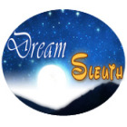 Dream Sleuth game