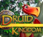 Druid Kingdom game