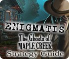 Enigmatis: The Ghosts of Maple Creek Strategy Guide game