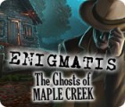 Enigmatis: The Ghosts of Maple Creek game