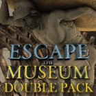 Escape the Museum Double Pack game