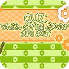 Flower Quiz game