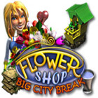 Flower Shop: Big City Break game