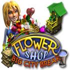 Flower Shop: Big City Break game