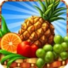 Gourmania 3: Zoo Zoom game
