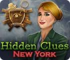 Hidden Clues: New York game