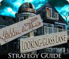 Hidden in Time: Looking-glass Lane Strategy Guide game