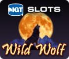 IGT Slots Wild Wolf game