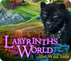 Labyrinths of the World: The Wild Side game