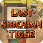 Last Siberian Tiger game