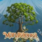 Mandragora game