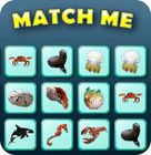 Match Me game