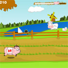 PigRace game