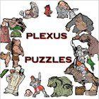 Plexus Puzzles game