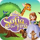 Princess Sofia The First: Zoo game