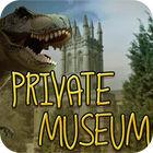 Private Museum game