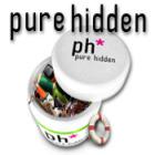 Pure Hidden game