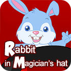 Rabbit In Magician's Hat game