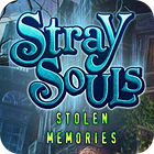Stray Souls: Stolen Memories game