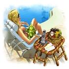 Summer Resort Mogul game