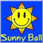 Sunny Ball game