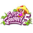 Super Granny 5 game