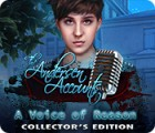 The Andersen Accounts: A Voice of Reason Collector's Edition game