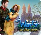 Winter in New York game