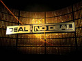 Free Download Deal or No Deal Screenshot 1
